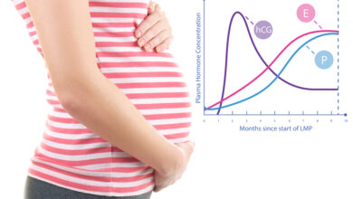 Photo of Read Important Factor of Cryptic Pregnancy