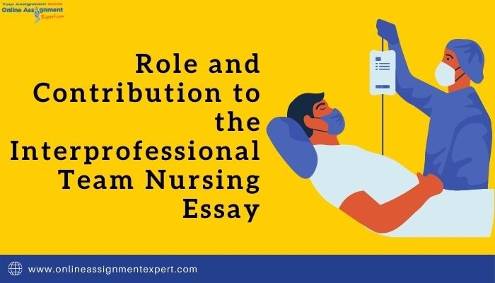 Photo of The Role of Interprofessional Team in Nursing Essay